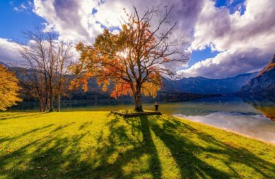 Deals and accommodation tips for your holiday in the Julian Alps